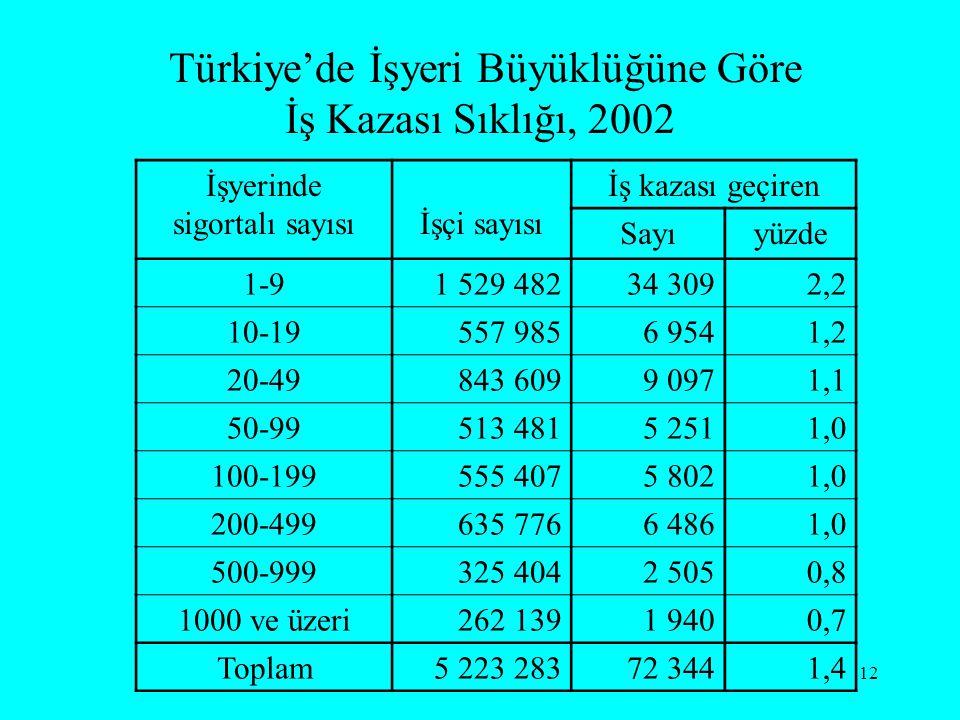Türkiye'de İşyeri Büyüklüğüne Göre İş Kazası Sıklığı, 2002