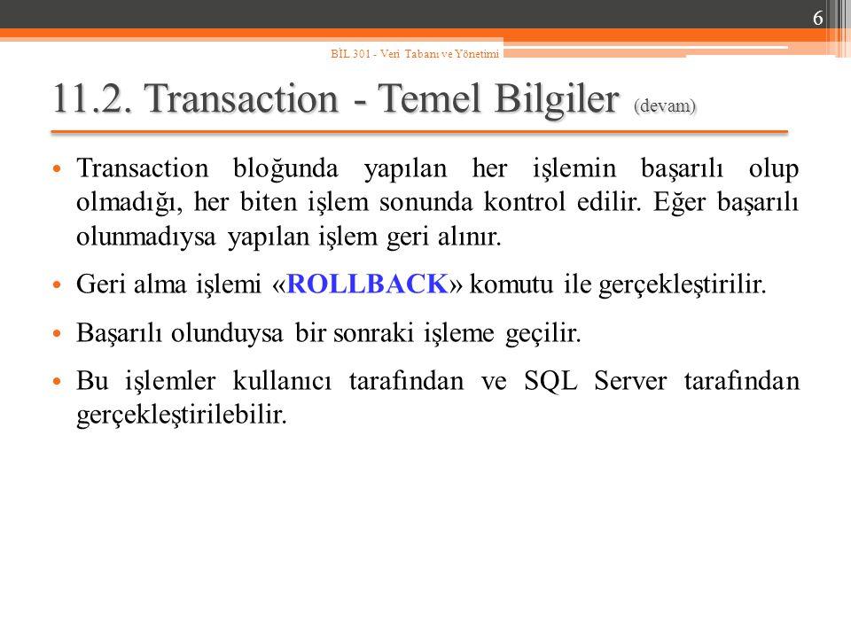 11.2. Transaction - Temel Bilgiler (devam)