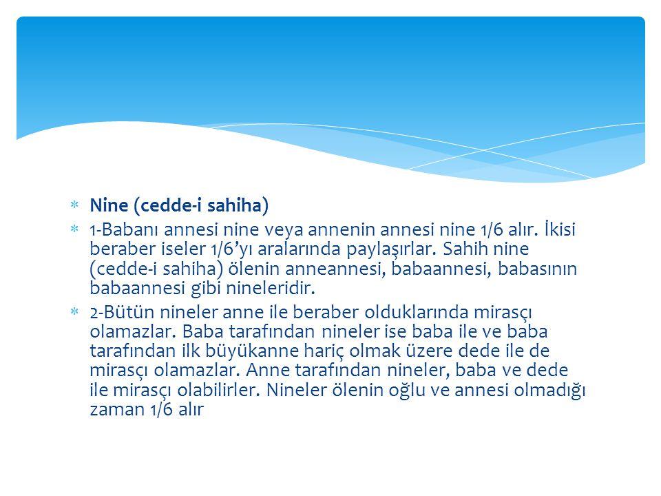 Nine (cedde-i sahiha)