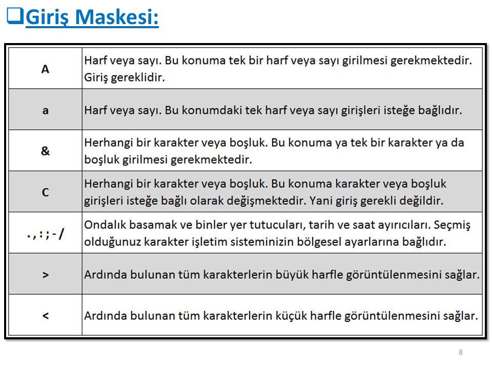 Giriş Maskesi: