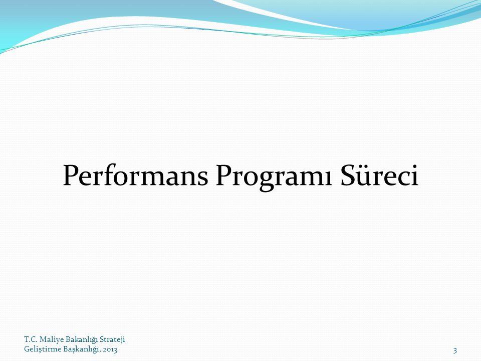 Performans Programı Süreci