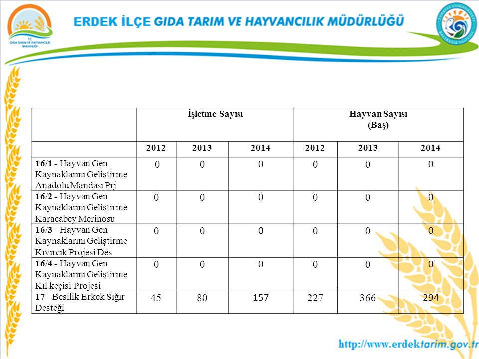 0 45 80 157 227 366 294 İşletme Sayısı Hayvan Sayısı (Baş) 2012 2013