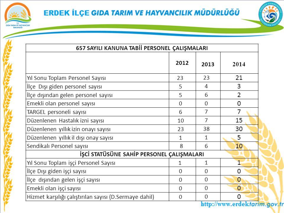 21 3 2 15 30 657 SAYILI KANUNA TABİİ PERSONEL ÇALIŞMALARI 2012 2013