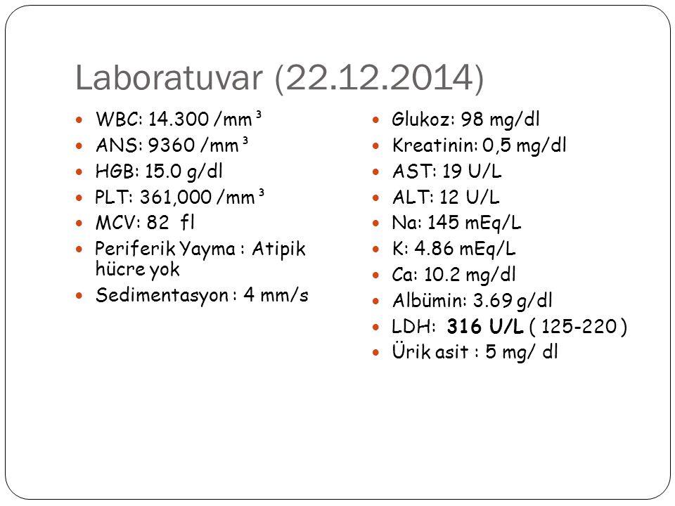Laboratuvar (22.12.2014) WBC: 14.300 /mm³ ANS: 9360 /mm³