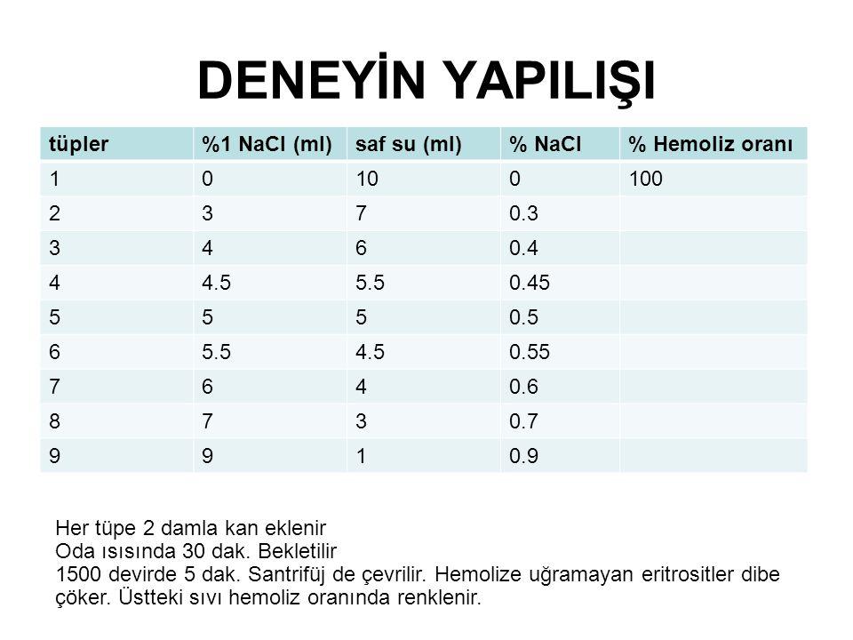 DENEYİN YAPILIŞI tüpler %1 NaCl (ml) saf su (ml) % NaCl