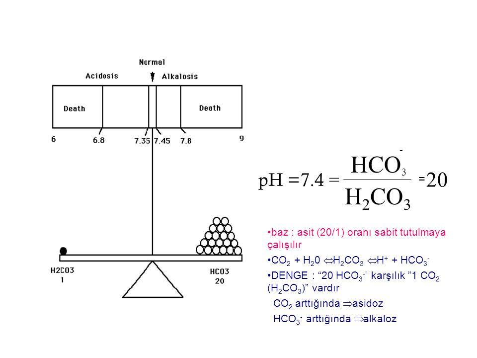 HCO - 3. pH =7.4 = 20. = H2CO3. baz : asit (20/1) oranı sabit tutulmaya çalışılır. CO2 + H20 Û H2CO3 Û H+ + HCO3-