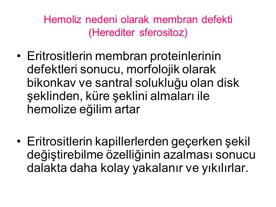 Hemoliz nedeni olarak membran defekti (Herediter sferositoz)