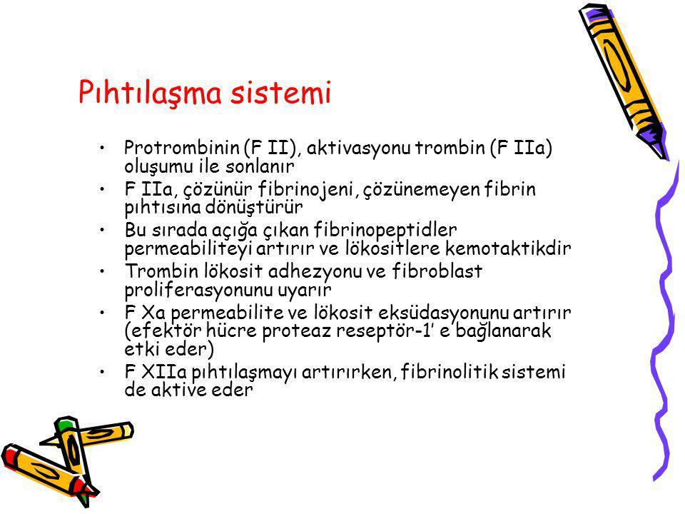 Pıhtılaşma sistemi Protrombinin (F II), aktivasyonu trombin (F IIa) oluşumu ile sonlanır.
