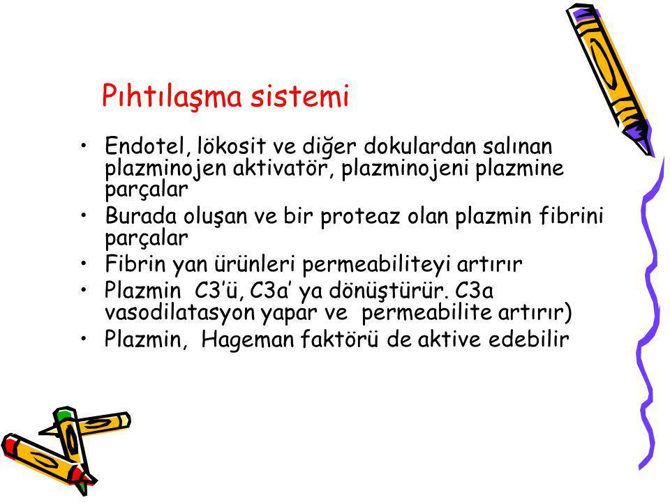 Pıhtılaşma sistemi Endotel, lökosit ve diğer dokulardan salınan plazminojen aktivatör, plazminojeni plazmine parçalar.