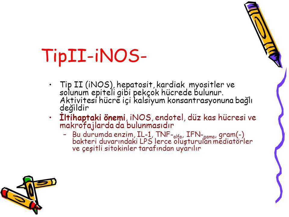 TipII-iNOS-