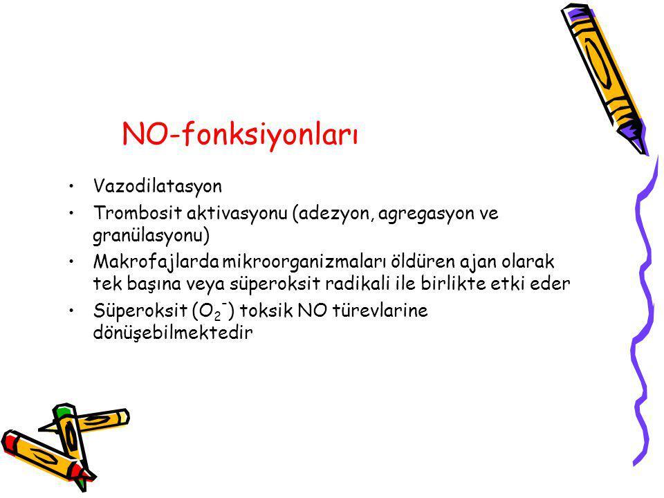 NO-fonksiyonları Vazodilatasyon