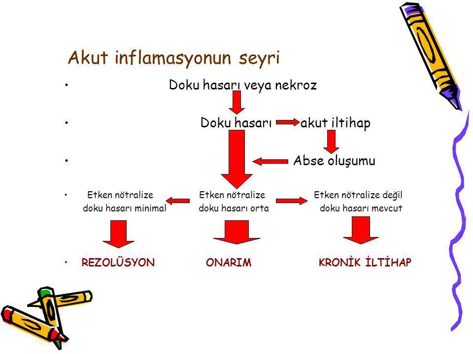 Akut inflamasyonun seyri