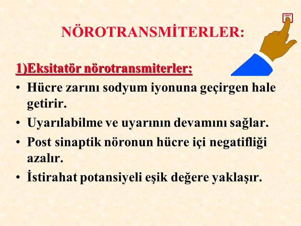 NÖROTRANSMİTERLER: 1)Eksitatör nörotransmiterler: