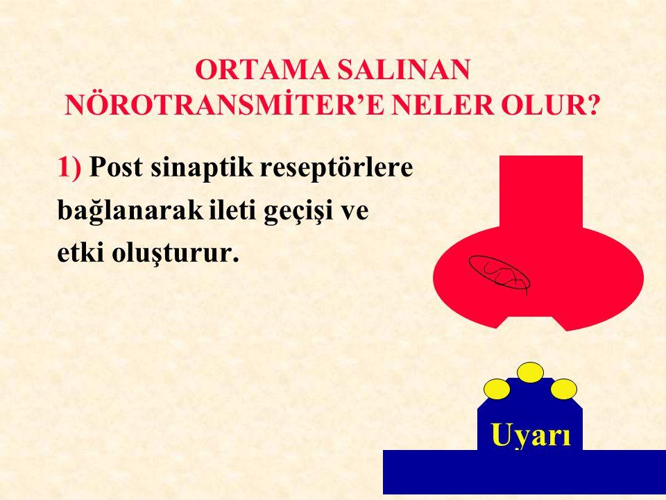 ORTAMA SALINAN NÖROTRANSMİTER'E NELER OLUR