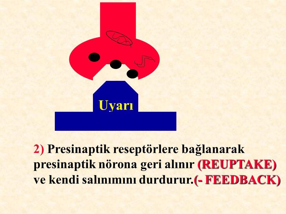 Uyarı 2) Presinaptik reseptörlere bağlanarak