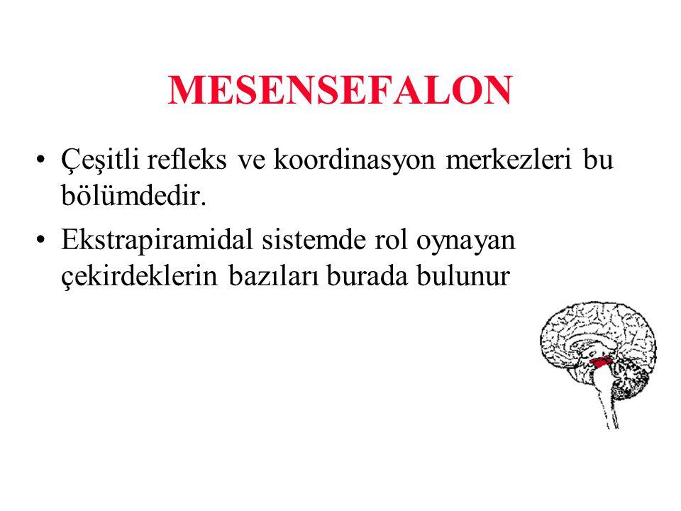 MESENSEFALON Çeşitli refleks ve koordinasyon merkezleri bu bölümdedir.