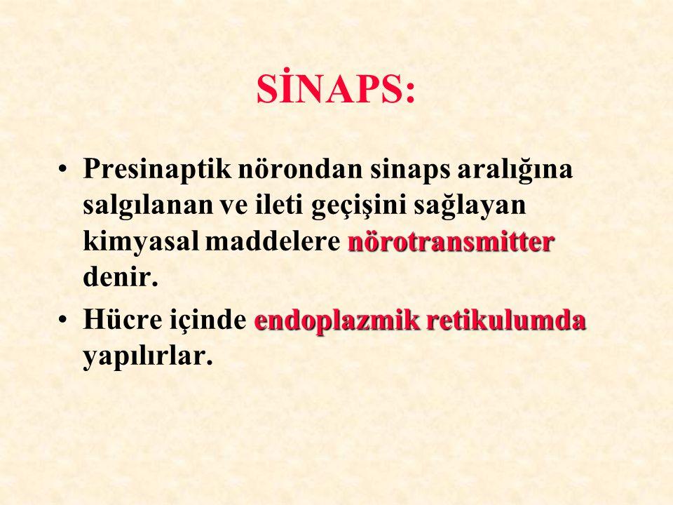 SİNAPS: Presinaptik nörondan sinaps aralığına salgılanan ve ileti geçişini sağlayan kimyasal maddelere nörotransmitter denir.
