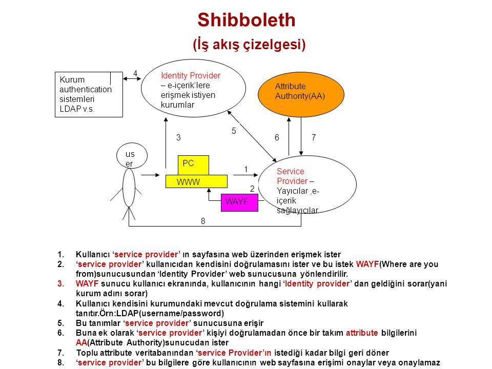 Shibboleth (İş akış çizelgesi)