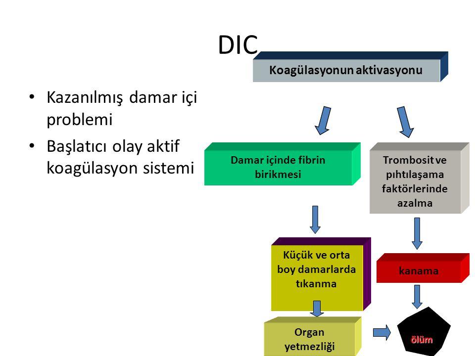 DIC Kazanılmış damar içi problemi