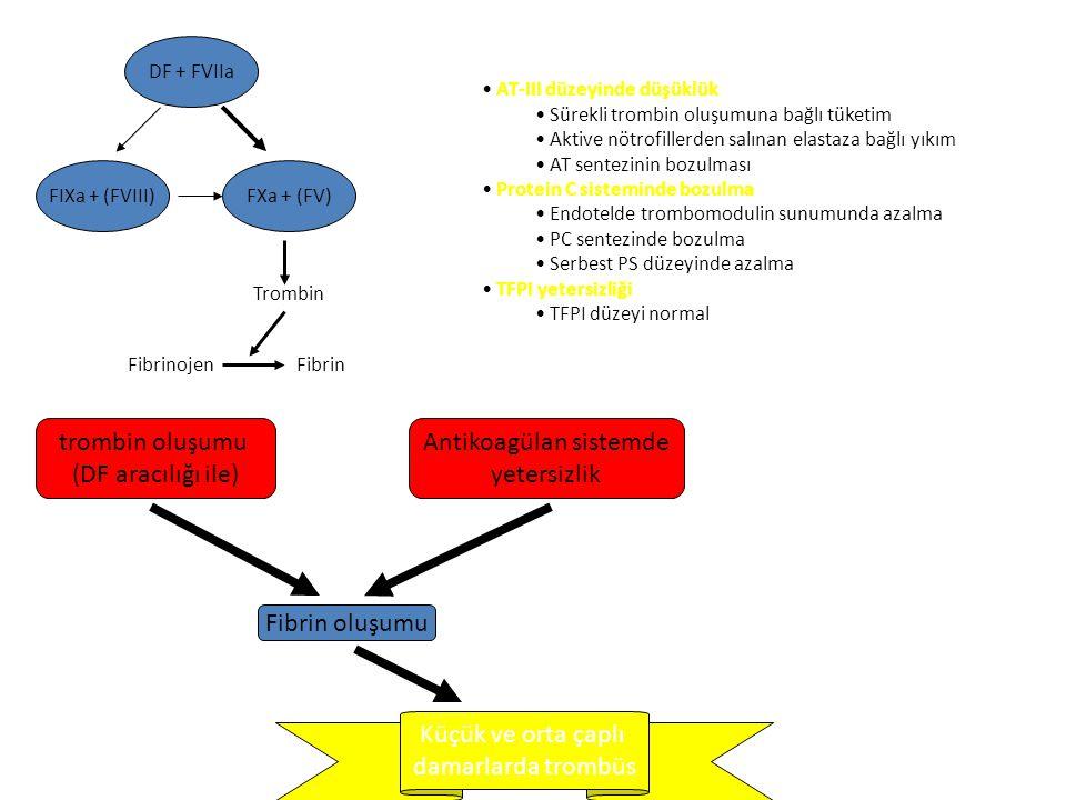 Antikoagülan sistemde