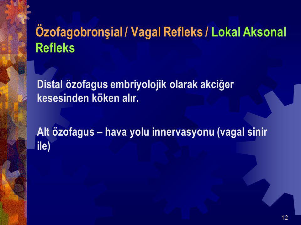 Özofagobronşial / Vagal Refleks / Lokal Aksonal Refleks