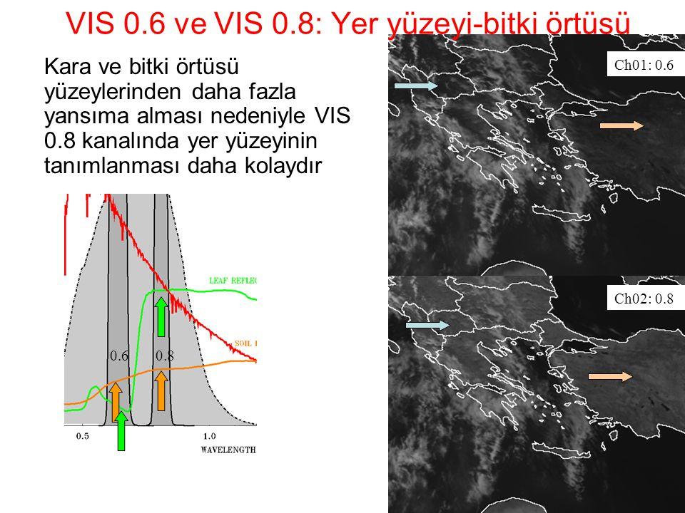 VIS 0.6 ve VIS 0.8: Yer yüzeyi-bitki örtüsü