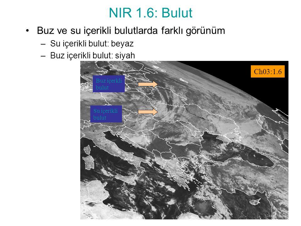 NIR 1.6: Bulut Buz ve su içerikli bulutlarda farklı görünüm