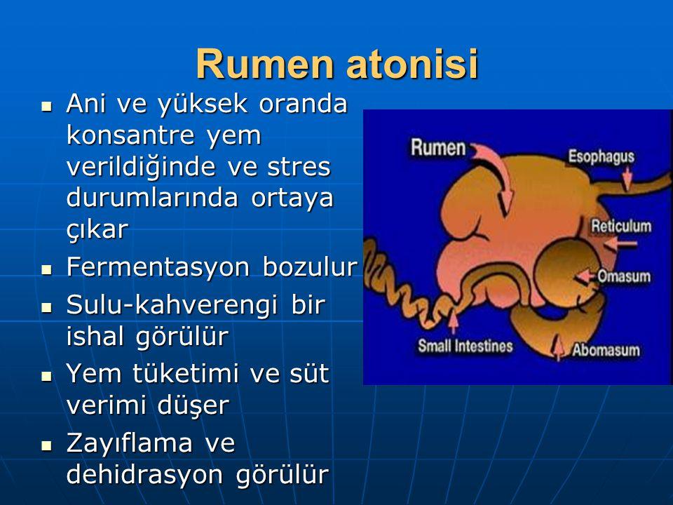 Rumen atonisi Ani ve yüksek oranda konsantre yem verildiğinde ve stres durumlarında ortaya çıkar. Fermentasyon bozulur.