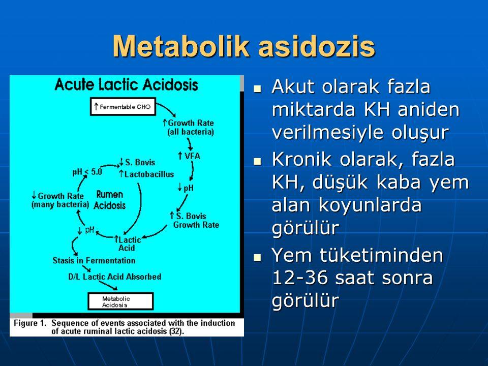Metabolik asidozis Akut olarak fazla miktarda KH aniden verilmesiyle oluşur. Kronik olarak, fazla KH, düşük kaba yem alan koyunlarda görülür.