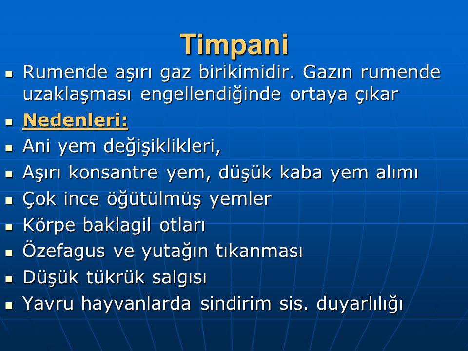 Timpani Rumende aşırı gaz birikimidir. Gazın rumende uzaklaşması engellendiğinde ortaya çıkar. Nedenleri: