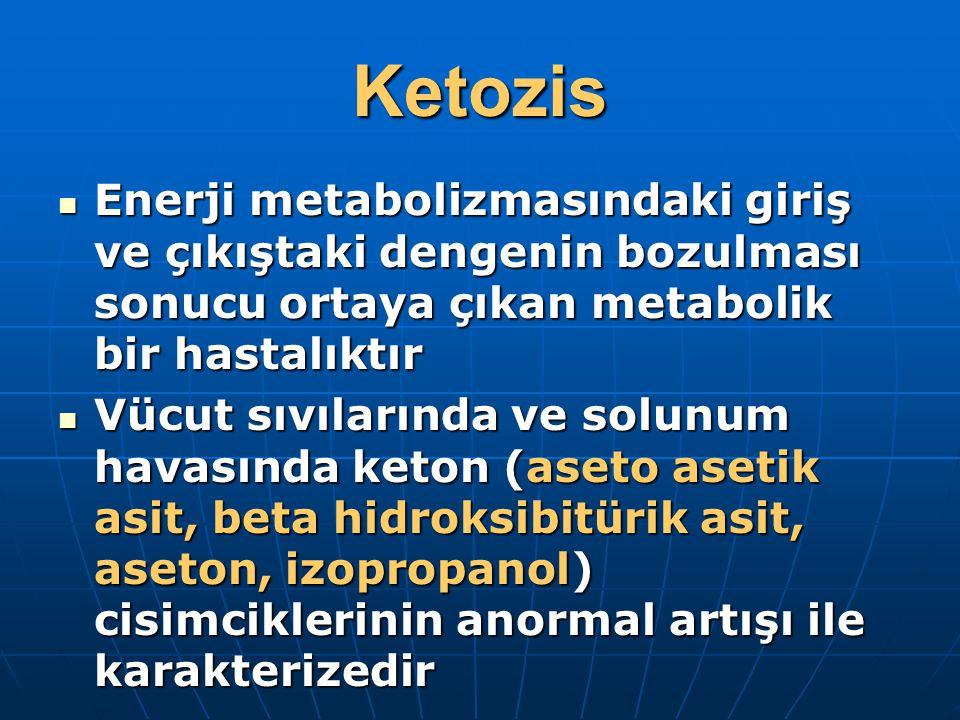 Ketozis Enerji metabolizmasındaki giriş ve çıkıştaki dengenin bozulması sonucu ortaya çıkan metabolik bir hastalıktır.