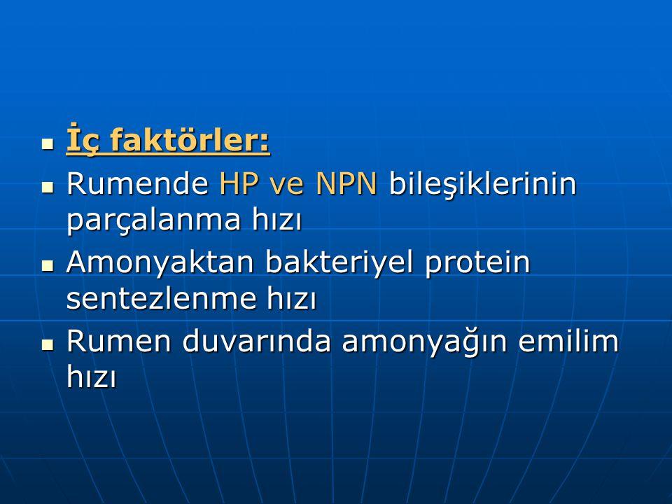 İç faktörler: Rumende HP ve NPN bileşiklerinin parçalanma hızı. Amonyaktan bakteriyel protein sentezlenme hızı.
