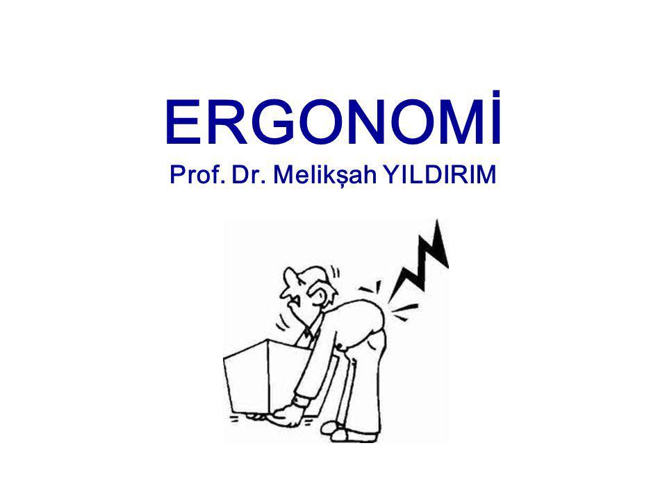 Prof. Dr. Melikşah YILDIRIM