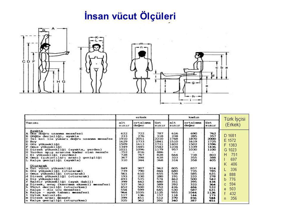 İnsan vücut Ölçüleri Türk İşçisi (Erkek) D 1681 E 1572 F 1383 G 1023