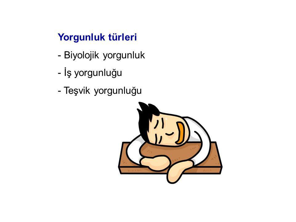 Yorgunluk türleri Biyolojik yorgunluk İş yorgunluğu Teşvik yorgunluğu