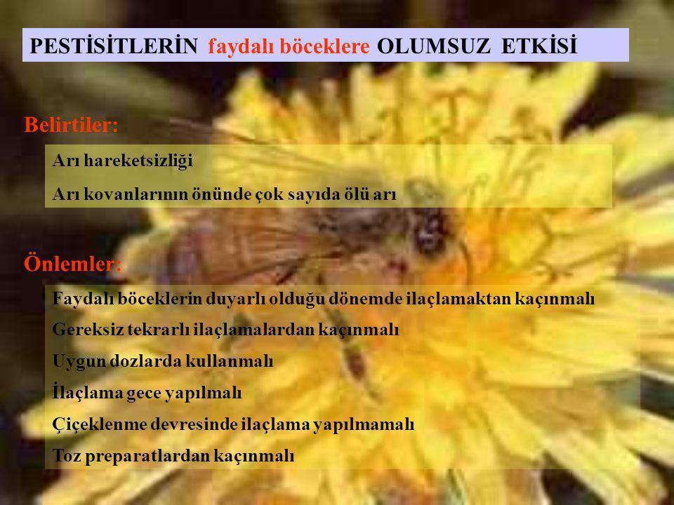 PESTİSİTLERİN faydalı böceklere OLUMSUZ ETKİSİ