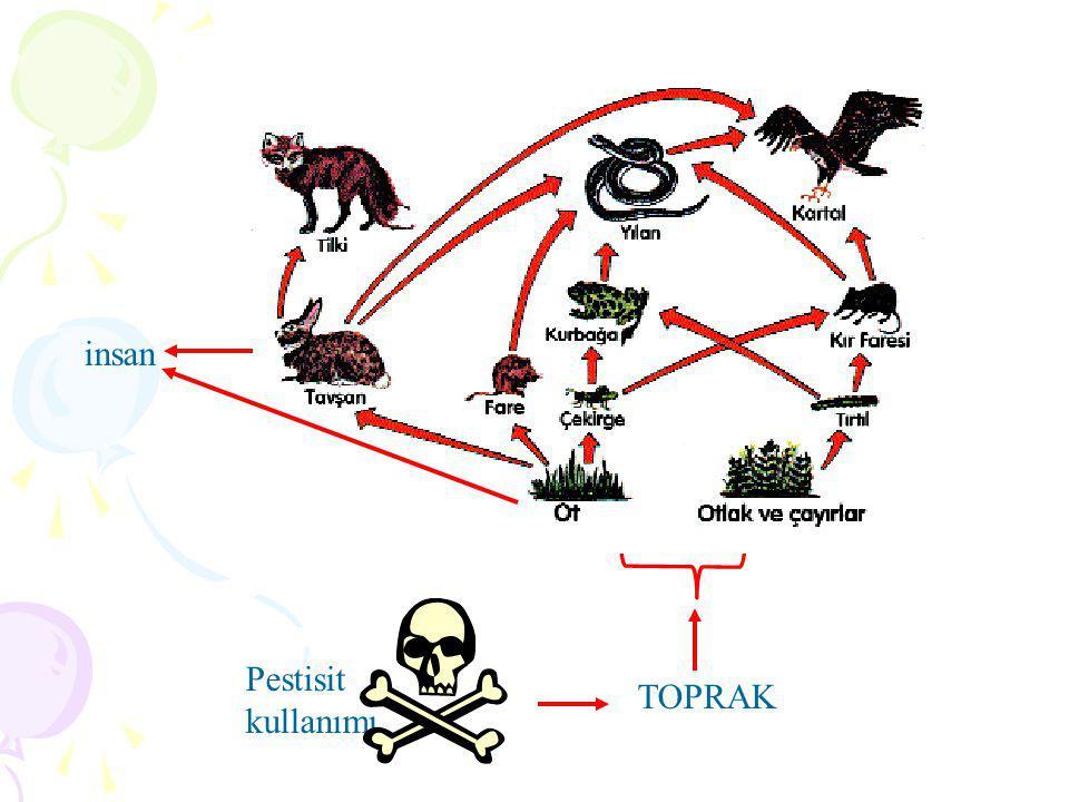 insan Pestisit kullanımı TOPRAK bitki