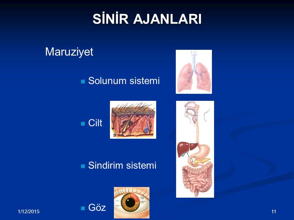 SİNİR AJANLARI Maruziyet Solunum sistemi Cilt Sindirim sistemi Göz