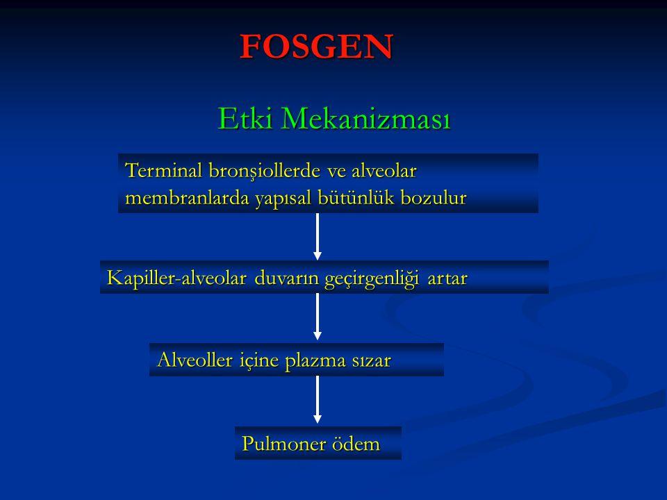 FOSGEN Etki Mekanizması