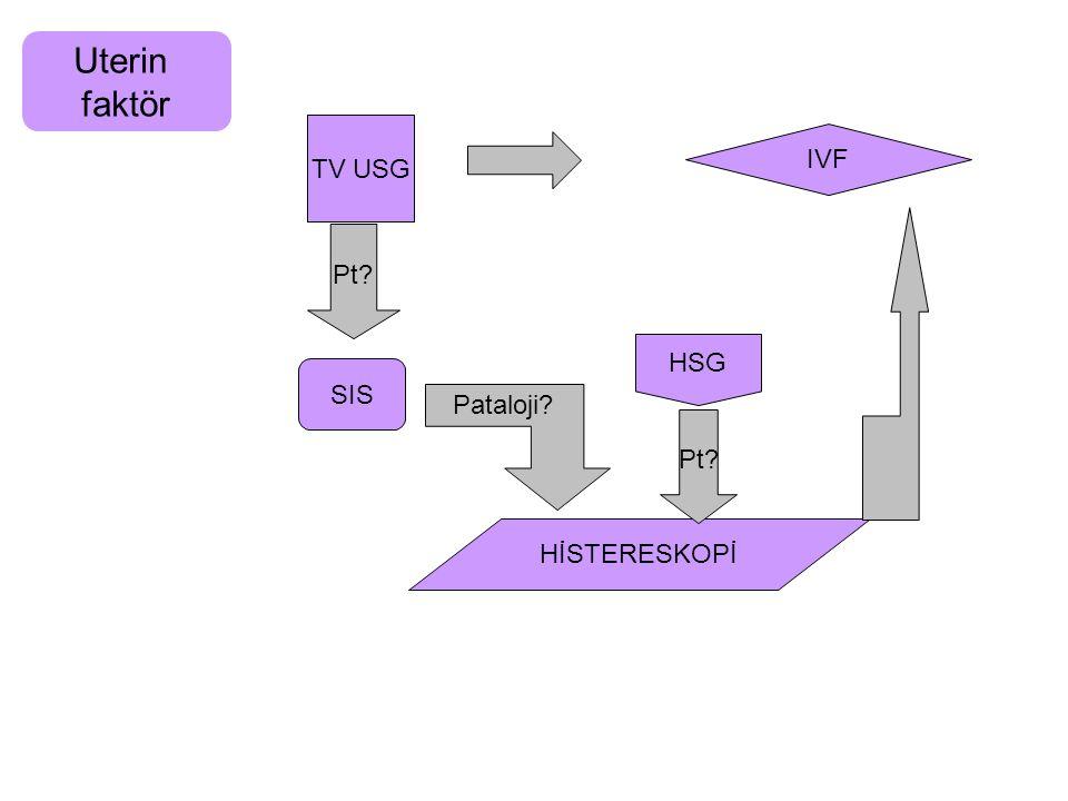 Uterin faktör TV USG IVF Pt HSG SIS Pataloji Pt HİSTERESKOPİ