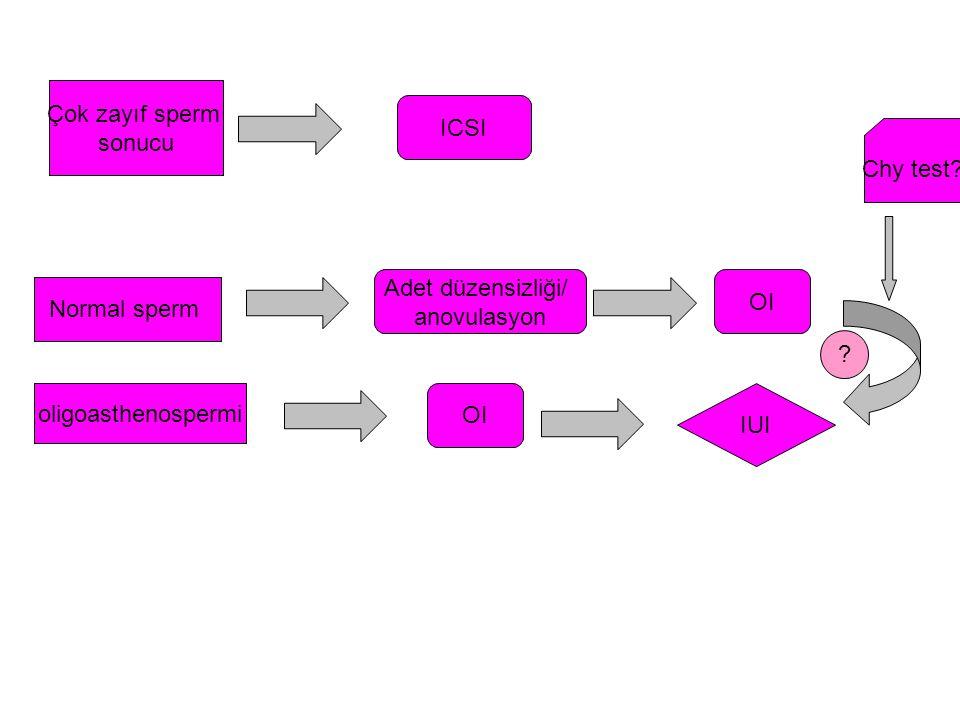 Çok zayıf sperm sonucu. ICSI. Chy test Adet düzensizliği/ anovulasyon. OI. Normal sperm. oligoasthenospermi.