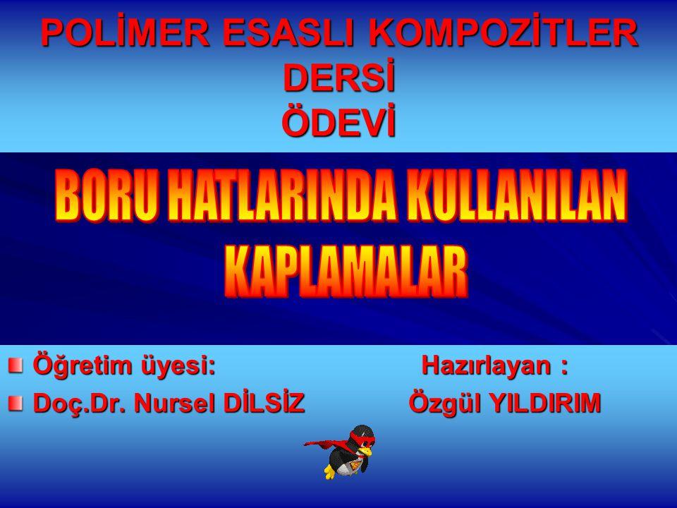 POLİMER ESASLI KOMPOZİTLER DERSİ ÖDEVİ