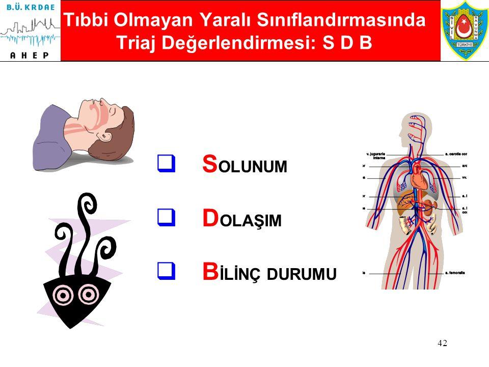 Tıbbi Olmayan Yaralı Sınıflandırmasında Triaj Değerlendirmesi: S D B