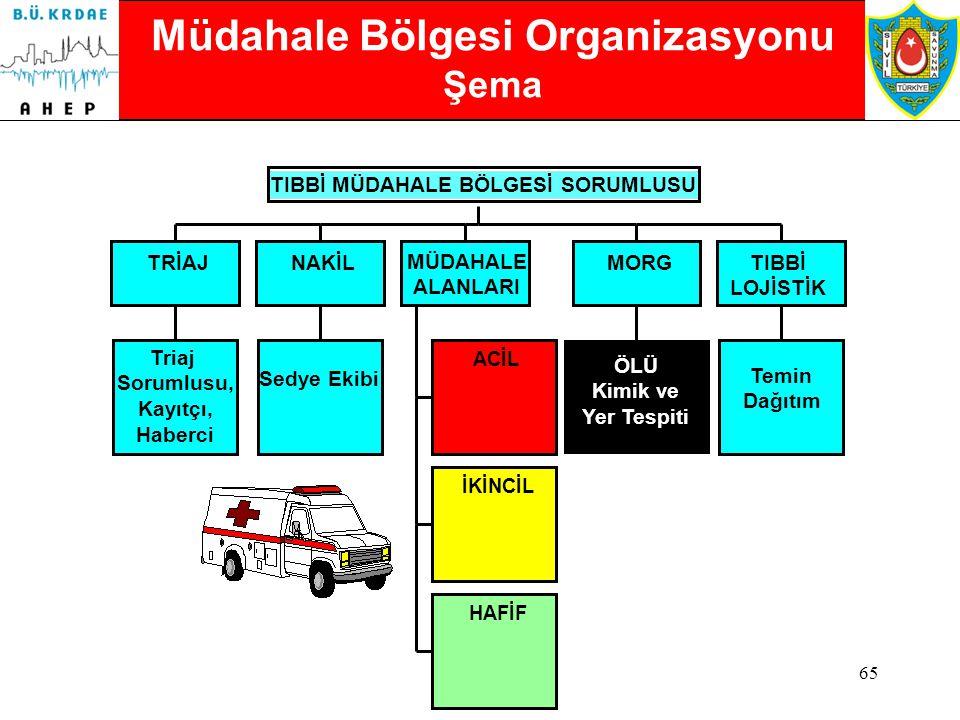 Müdahale Bölgesi Organizasyonu Şema