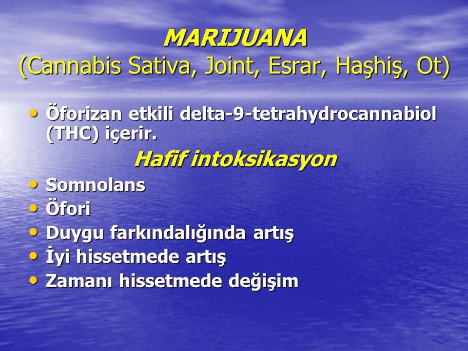 MARIJUANA (Cannabis Sativa, Joint, Esrar, Haşhiş, Ot)