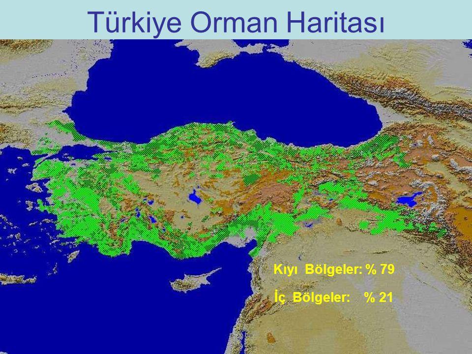 Türkiye Orman Haritası