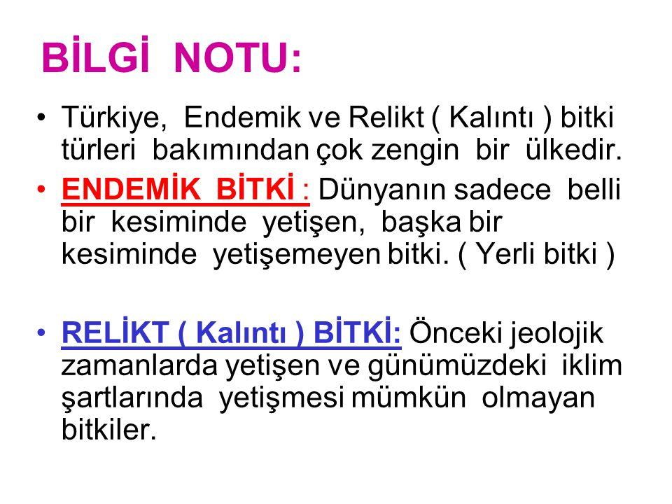 BİLGİ NOTU: Türkiye, Endemik ve Relikt ( Kalıntı ) bitki türleri bakımından çok zengin bir ülkedir.