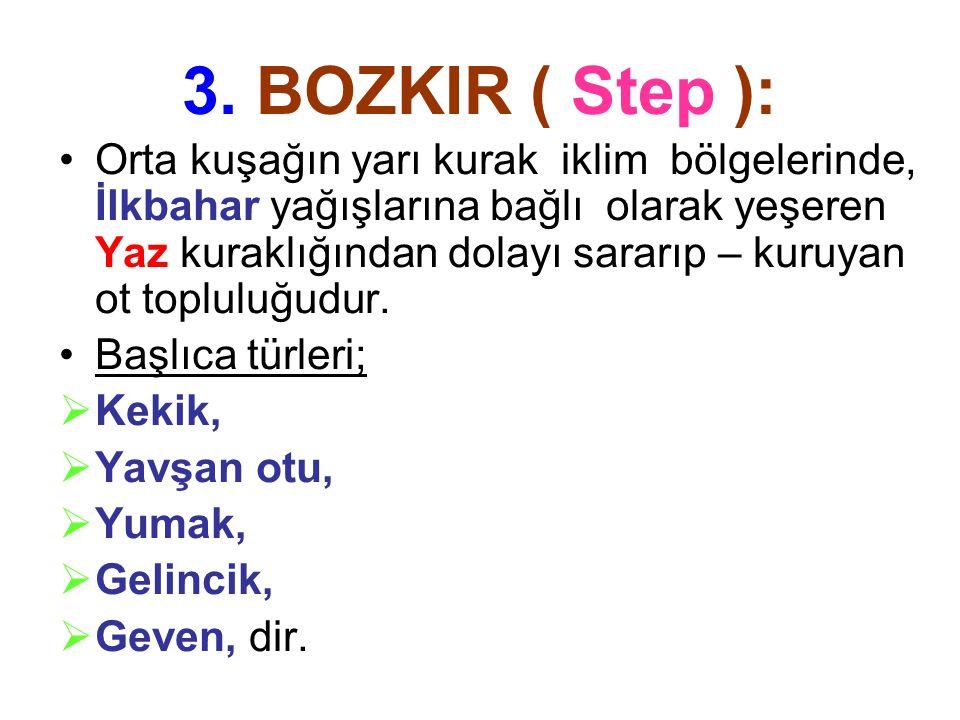 3. BOZKIR ( Step ):