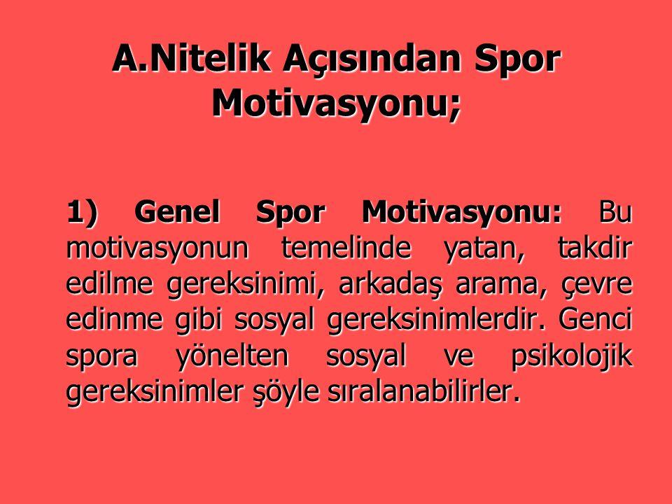 A.Nitelik Açısından Spor Motivasyonu;