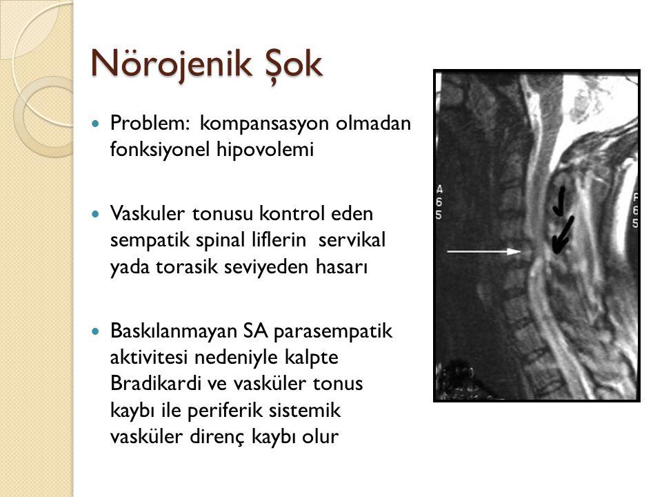 Nörojenik Şok Problem: kompansasyon olmadan fonksiyonel hipovolemi